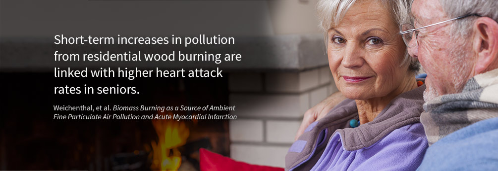 Pollution from wood stoves and fireplaces has been found to be the top airborne cancer risk in some communities.